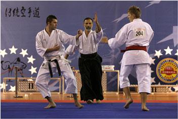 cupa-campionilor-editia-2009