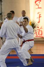 karate-23apr-25apr-2010